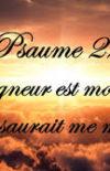 (Français) Jésus, Berger de ma vie. Une lecture chrétienne du Psaume 23 (22), partie 2/2